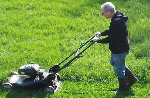 Steve cutting the grass!  A little every day . .