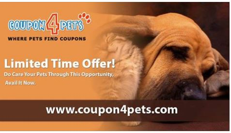 http://www.coupon4pets.com/categories/catsandkittens442041-discount-coupon-codes.html