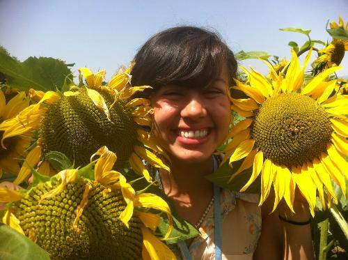 Amberle in Switzerland surrounded by sunflowers