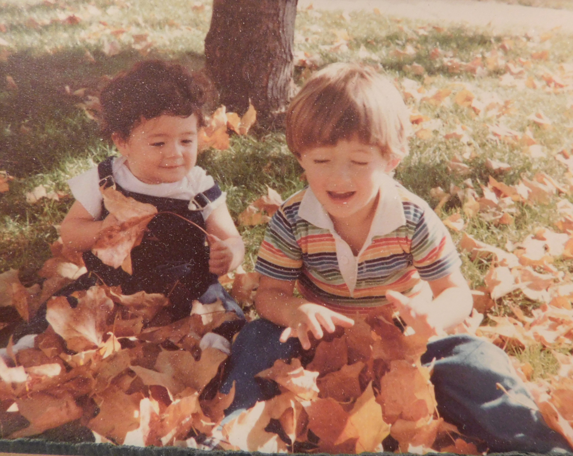 Little curly haired Ben and his brother Aaron in the fall leaves
